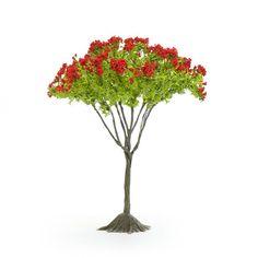 This is an artificial tree for a miniature Zen garden or a fairy Zen garden from Georgetown Home & Garden. Miniature Zen Garden, Artificial Tree, Fairy Garden Accessories, Bonsai, Dandelion, Home And Garden, Miniatures, Herbs, Flowers