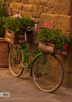 Florence Flower Bike by tomsjogren Bicycle Decor, Bicycle Basket, Retro Bicycle, Old Bicycle, Bicycle Art, Vintage Bicycles, Old Fashioned Bicycle, Bicycle Pictures, Lowrider Bicycle