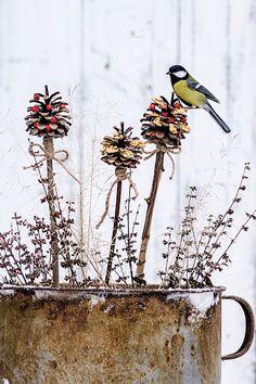 Dekorace k snědku. Veselé zápichy s nadílkou výživných semen ocení nejenom sýkorky.