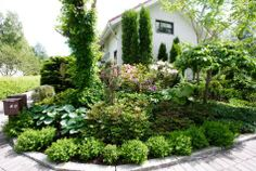 2012 puutarhabarometri – tällaisen puutarhan suomalaiset haluavat