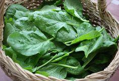 Orqanizmi təmizləyən və cavanlaşdıran ən faydalı göyərti – Hekim.pro Lettuce, Carne, Cabbage, Food, Iron, Healthy Food, Meals, Cabbages, Yemek