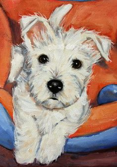 "West Highland Terrier ACEO WESTIE PRINT Painting ""LITTLE PUPPY"" Dog Art RANDALL"