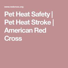 Pet Heat Safety | Pet Heat Stroke | American Red Cross