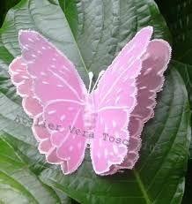 Resultado de imagem para borboleta de papel de seda