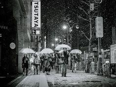 Snowy Evening, Tokyo