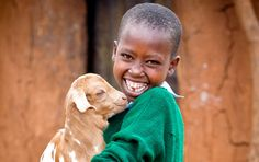 The goat is the most popular item in the World Vision Gift Catalog.