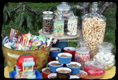 Country Theme Party Decorations   Food…..little bit of imagination….little bit of Pinterest ...