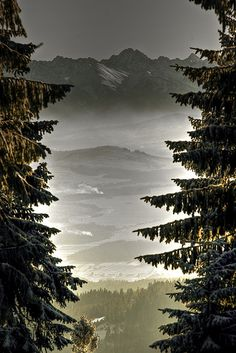 Glance on Tatry mountains and a valley from the trail to Turbacz in Gorce mountain range