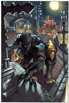 Black Panther & Daredevil by Simone Bianchi