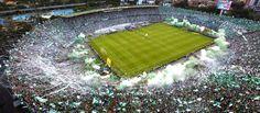 De la euforia a la duda Leonel Messi, Football Team, Outdoor Decor, Rock, Athlete, Money, Colombia, Green, Skirt