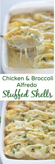 Chicken and Broccoli Alfredo Stuffed Shells includetender pasta shells | on myrecipemagic.com