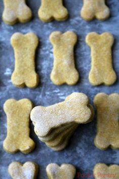 Healthy Dog Treats Pumpkin Banana Dog Treats - Pook's Pantry - Easy, home banana pumpkin dog treats. Dog Biscuit Recipes, Dog Treat Recipes, Dog Food Recipes, Banana Dog Treat Recipe, Banana Treats, Homemade Dog Cookies, Homemade Dog Food, Homemade Dog Biscuits, Pumpkin Dog Biscuits