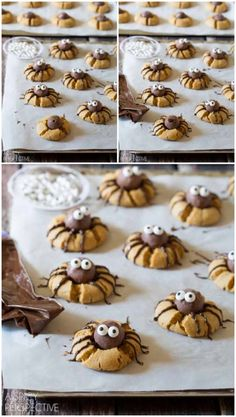 Easy Chocolate Peanut Butter Spider Cookies for Halloween! These cute little guys are made on a peanut butter cookie base with a chocolate truffle in the Halloween Desserts, Postres Halloween, Halloween Goodies, Halloween Food For Party, Halloween Treats, Halloween Chocolate, Halloween Decorations, Homemade Halloween, Spooky Treats