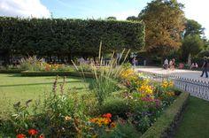 parigi: giardini a Notre Dame