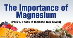 The Importance of Magnesium, and Top Foods That Can Help Improve Your Magnesium Levels