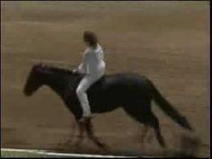 No bridle - no reins - no saddle this is girl is amazing she just lost her dad 24 days before she entered and don't let me forget she can't hear not speak too.... She trained this horse herself to in just 20 days