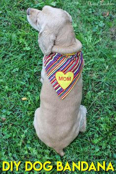 Dog bandana pattern not really necessary to have a pattern but diy personalized dog bandana sewing tutorial looking for a gift for a dog lover solutioingenieria Gallery