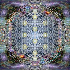 flower of life/tree of life / Sacred Geometry <3