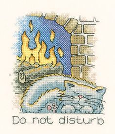 Do not disturb - a sleeping cat in front of a log fire.