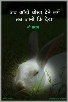जब आँखें धोखा देने लगें तब जानो कि देखा। ~ श्री प्रशांत #ShriPrashant #Advait #deception #senses Read at:- prashantadvait.com Watch at:- www.youtube.com/c/ShriPrashant Website:- www.advait.org.in Facebook:- www.facebook.com/prashant.advait LinkedIn:- www.linkedin.com/in/prashantadvait Twitter:- https://twitter.com/Prashant_Advait