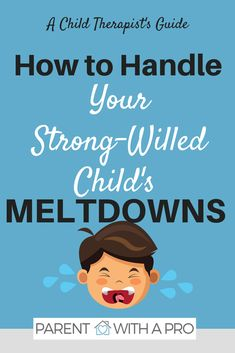 Episode How to Handle Meltdowns Parent with a Pro I Parenting Tips I Strong-willed child I Metldowns via Free Parenting Classes, Parenting Websites, Parenting Toddlers, Parenting Hacks, Parenting Strong Willed Child, Peaceful Parenting, Gentle Parenting, Toddler Behavior, Toddler Discipline
