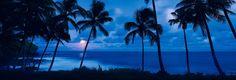 Питер Лик - самый дорогой фотограф в мире - Страница Виртуальных Путешественников