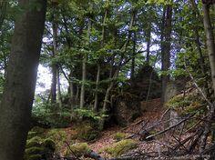 zwischen Adlerstein und Quackenschloss, Fränkische Schweiz