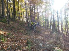 GPS Mountainbike route Heimbach, Eifel, Duitsland