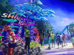 Nova montanha-russa de Orlando  #montanharussa #orlando #seaworld