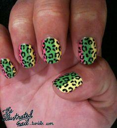 colorful cheetah