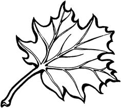 Eastern Black Oak Leaf coloring page from Oaks category. Select from 27260 printable crafts of cartoons, nature, animals, Bible and many more.