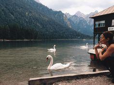 lake_swan_woman