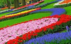 Cool 39 Unique Plants Flower Garden Design Ideas. More at https://decoratrend.com/2018/02/23/39-unique-plants-flower-garden-design-ideas/