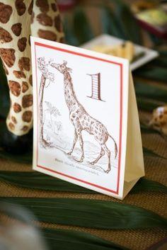 Giraffe Table Numbers 275x412 Safari Inspired Wedding at Maryland Zoo in Baltimore: Lauren + Brennan