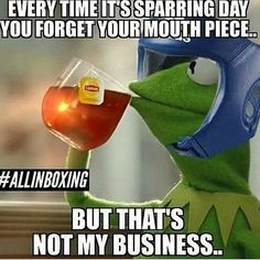 Lol  Martial arts, mma, fighters humor, fail memes, mock warriors, plus blackbelt fun stuff. Kermit the Frog memes. None of my business memes. Funny!!