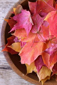 display fall leaves in wooden bowl