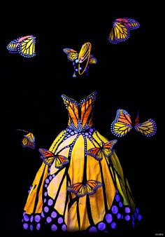 Monarch Butterfly Dress, World of Wearable Art Awards Wellington NZ, Illumination Illusion Section Halloween Kostüm, Halloween Costumes, Witch Costumes, World Of Wearable Art, Butterfly Dress, Butterfly Costume, Butterfly Fairy, Monarch Butterfly, Origami Fashion