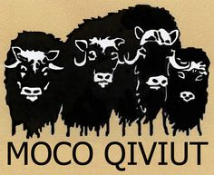 MOCO Qiviut Logo