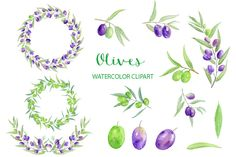 Watercolour clipart - Hand painted olives for instant download. by CornerCroft on Etsy