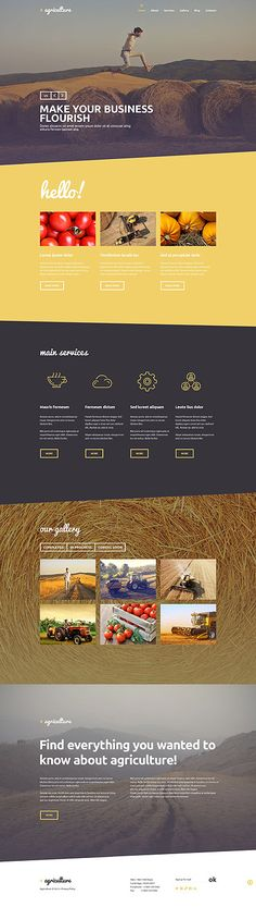 Graphic and website design: Agriculture Business Site