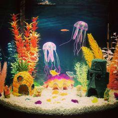 SpongeBob themed aquarium complete with jelly fish