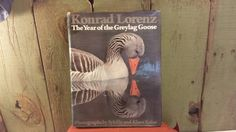 """Vintage """"The Year of the Greylag Goose"""" by Konrad Lorenz -1978 by 3OaksTreasure on Etsy"""