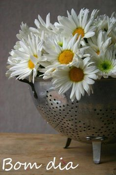 Flores Flowers Bom dia.  Bibi Villela...Decor..