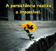 Empower Network - Persistência e Coragem Persistência e Coragem Uma bela História. http://www.marcommendes.com/liberdade?ad=blogpersistencia