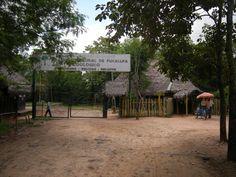 Pucallpa Peru Zoo