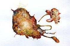 Nippelditts.Aquarell.Serie,ca 45 Bilder