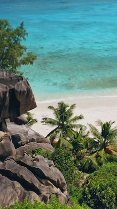 One of the most beautiful tropical islands in the world is easily the Seychelles (East Africa). Find out which islands made our list of the top 50 tropical destinations in the world. Beautiful Places To Travel, Most Beautiful Beaches, Romantic Travel, Dream Vacations, Vacation Spots, Italy Vacation, Seychelles Islands, Fiji Islands, Cook Islands