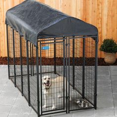 Most current Cost-Free American Kennel Club 4 ft. x 8 ft. x 6 ft. Uptown Premium Steel Boxed Kennel - The Home Depot Concepts A secure area for your dog A dog kennel is a good choice to provide your pets protected leave during Chain Link Dog Kennel, Metal Dog Kennel, Wooden Dog Kennels, Dog Kennel Cover, Diy Dog Kennel, Kennel Ideas, Outdoor Cats, Indoor Outdoor, Large Dog House Plans
