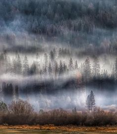 Moody morning fog rolls on Wawona Golf Course as we say goodbye to another Yosemite adventure. =================================  Location: Yosemite CA  Camera: @canonusa Canon 6D  Lens: @canonusa 70-200mm f/2.8L IS USM  Lens: @canonusa 1.4 Extender III  Filter: @hoyafilterusa Polarizer  Tripod: @manfrottoimaginemore 055 & 410 Geared Head  f/11  1/4 seconds  ISO 100 ================================= #landscape_lovers #sky_captures #landscapephotography #fantastic_earth #landscape_captures…