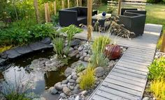 pond and deck